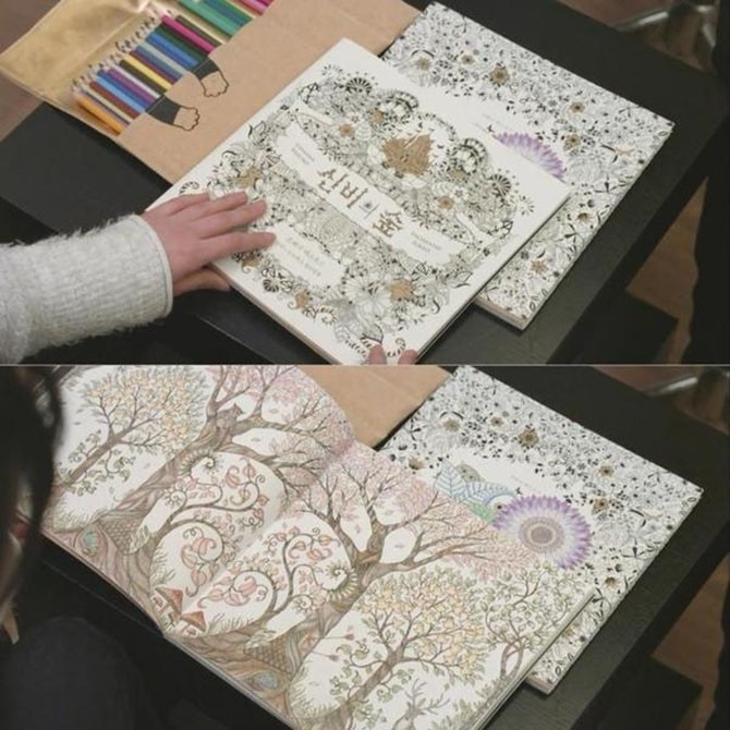 Secret Garden Coloring Book Original Korean Version