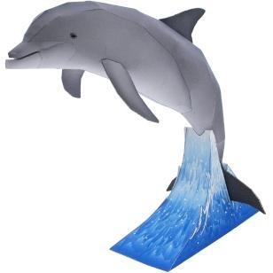 960+ Gambar Hewan Ikan Lumba-lumba Terbaru