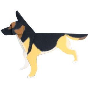 42+ Harga anjing gembala jerman terupdate