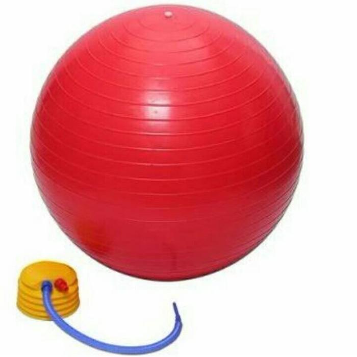 harga Go fit - exercise / gym / fisioterapi / yoga / pilates ball 65cm Tokopedia.com