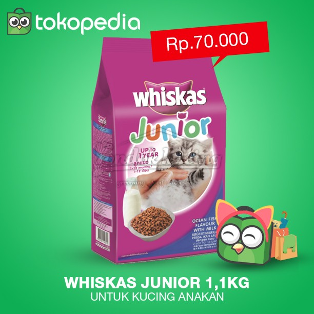 harga Makanan kucing - whiskas junior 11kg Tokopedia.com