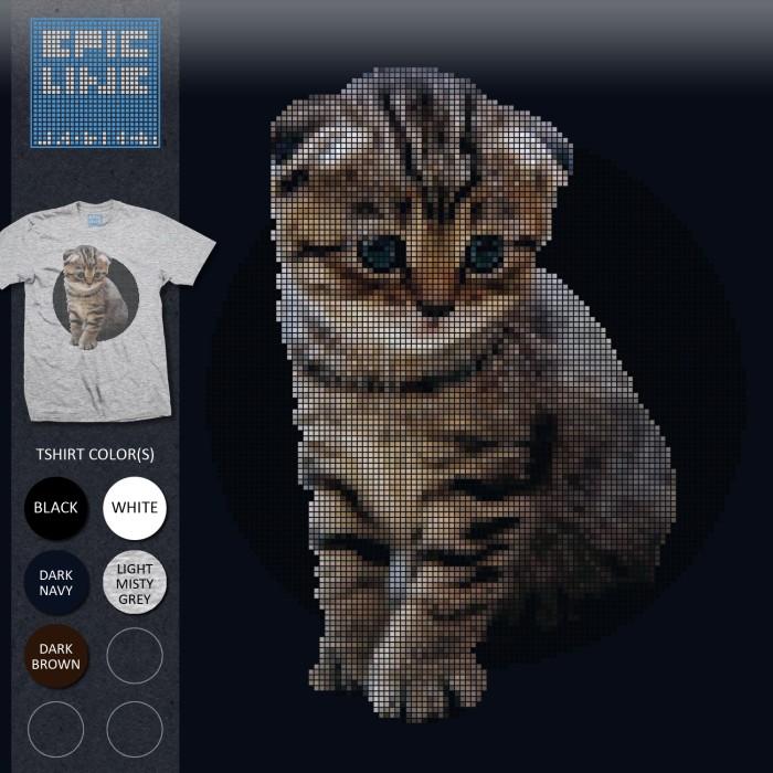 Info Kucing Scottish Fold Hargano.com