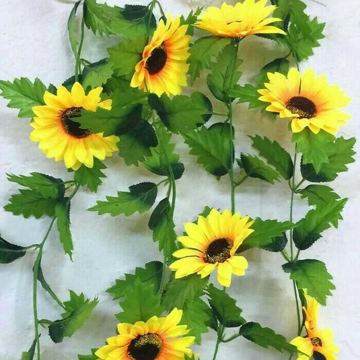 Jual bunga matahari bunga plastik bunga hias bunga rambat - anita ... be8308039d