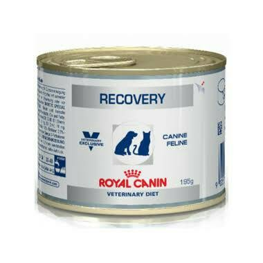 Royal canin recovery - 195 gr makanan kucing / anjing