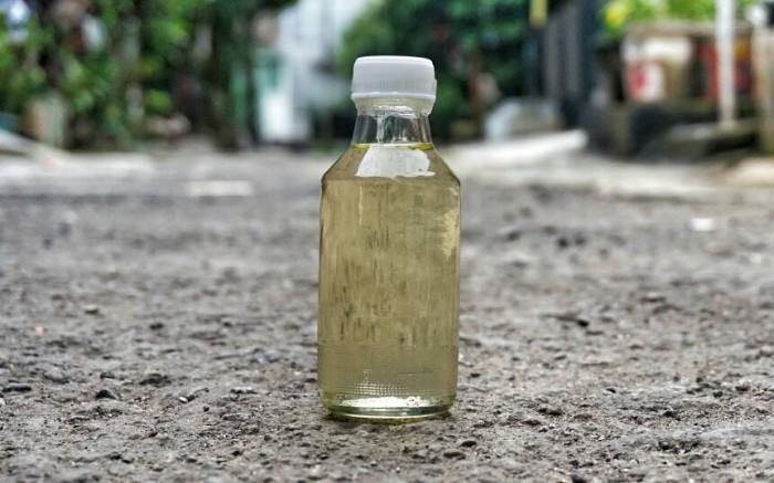 harga Minyak kelapa / minyak klentik / vco Tokopedia.com