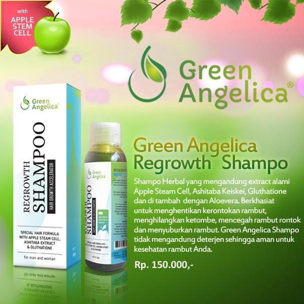 Jual Shampo Penumbuh Rambut Cepat Green Angelica - Kantor Green ... c53b22f44c