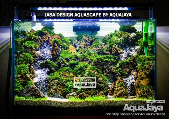 Jual Jasa Design Aquarium Aquascape Ukuran 60cm Full Set By