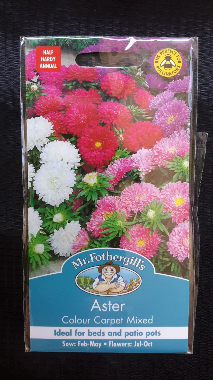1 pack 250 benih bibit bunga aster colour carpet mr.fothergills .