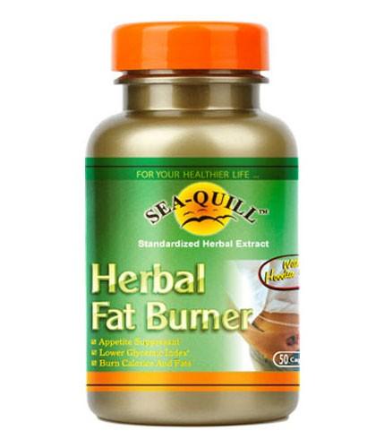 makanan fat burner alami)