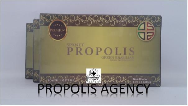 Spanet propolis green brazilian