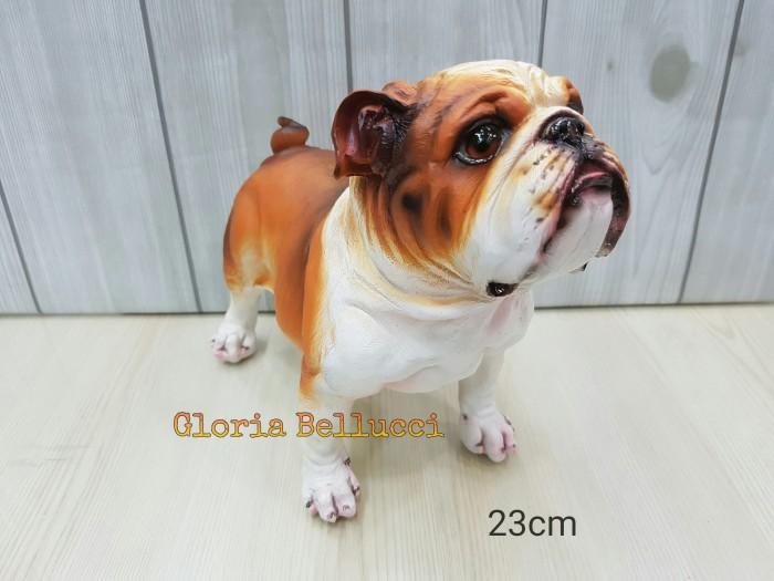 Fitur Nutrisi dari Bulldog Prancis