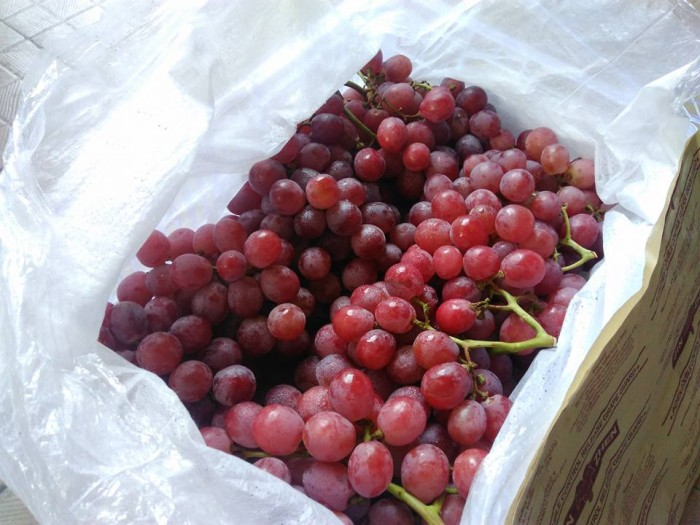 76+ Gambar Anggur Merah 1 Krat Terlihat Keren