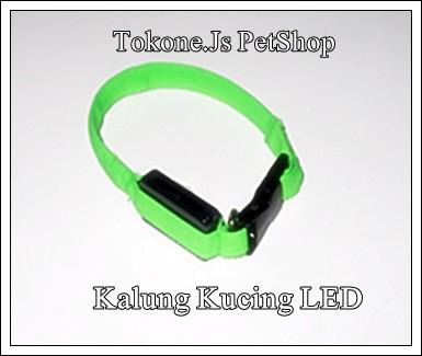harga Kalung untuk kucing dengan led Tokopedia.com