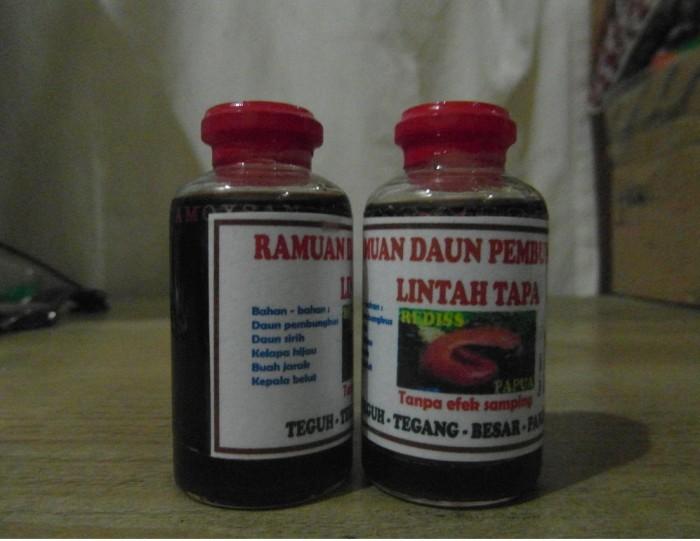 jual minyak lintah hitam asli papua minyak pembesar alat