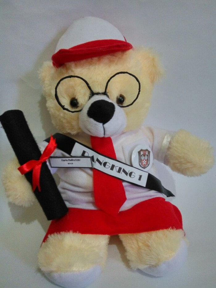 Jual Boneka Wisuda Teddy Bear SD  27ecdfa459