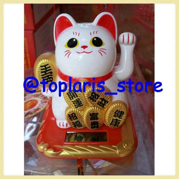 harga Kucing hoki rejeki jumbo solar Tokopedia.com