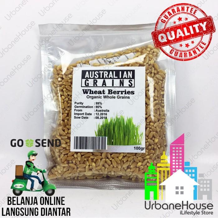 harga Benih wheat berries wheat grass organic import rumput gandum organik Tokopedia.com