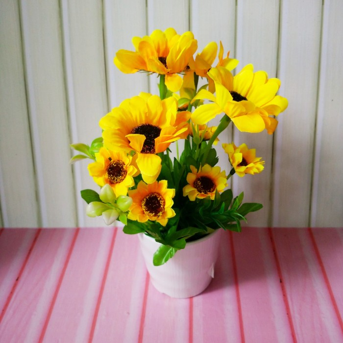Sketsa Gambar Bunga Matahari Dalam Pot Kata Kata