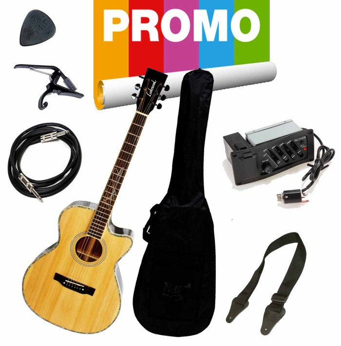 harga Gitar lakewood akustik elektrik paket ( gitar lakewood premium) Tokopedia.com