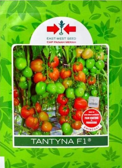 Benih Pertanian Tomat Hibrida TANTYNA F1 [1750 Butir] Murah
