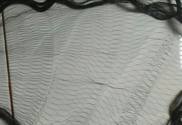 harga Jaring burung 2.5  inchi panjang warna hitam Tokopedia.com