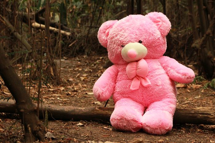Jual Boneka Cantik Lucu Imut Beruang Teddy Bear Pink Super Jumbo 120 ... e17e5f94d6