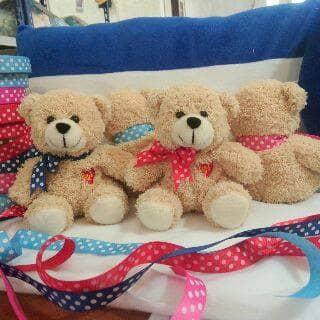 Boneka Cantik Lucu Imut Teddy Bear Beruang Kado Souvenir Ultah Wisud