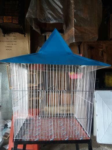 harga Kandang burung beo model kerucut ukuran kecil plus tangkringan Tokopedia.com