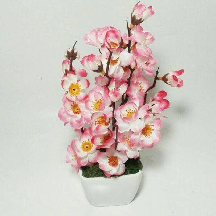 Jual Bunga Sakura Dan Pot Nya Promo Jakarta Barat Adeline Shop Tokopedia