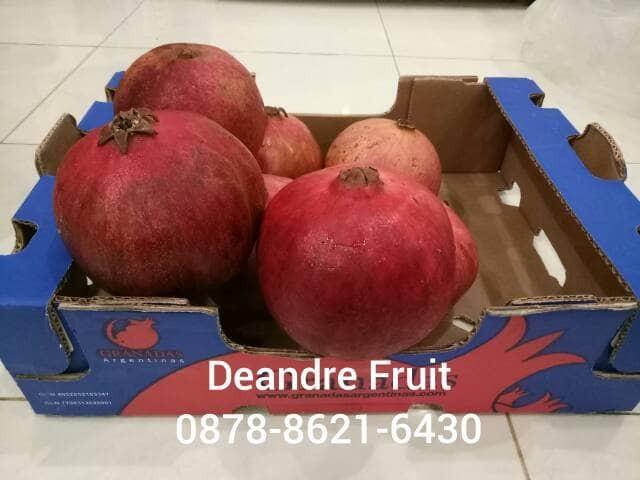 berisi 20 biji benih buah blueberry import. Source · Buah Delima Merah Import Jumbo Harga