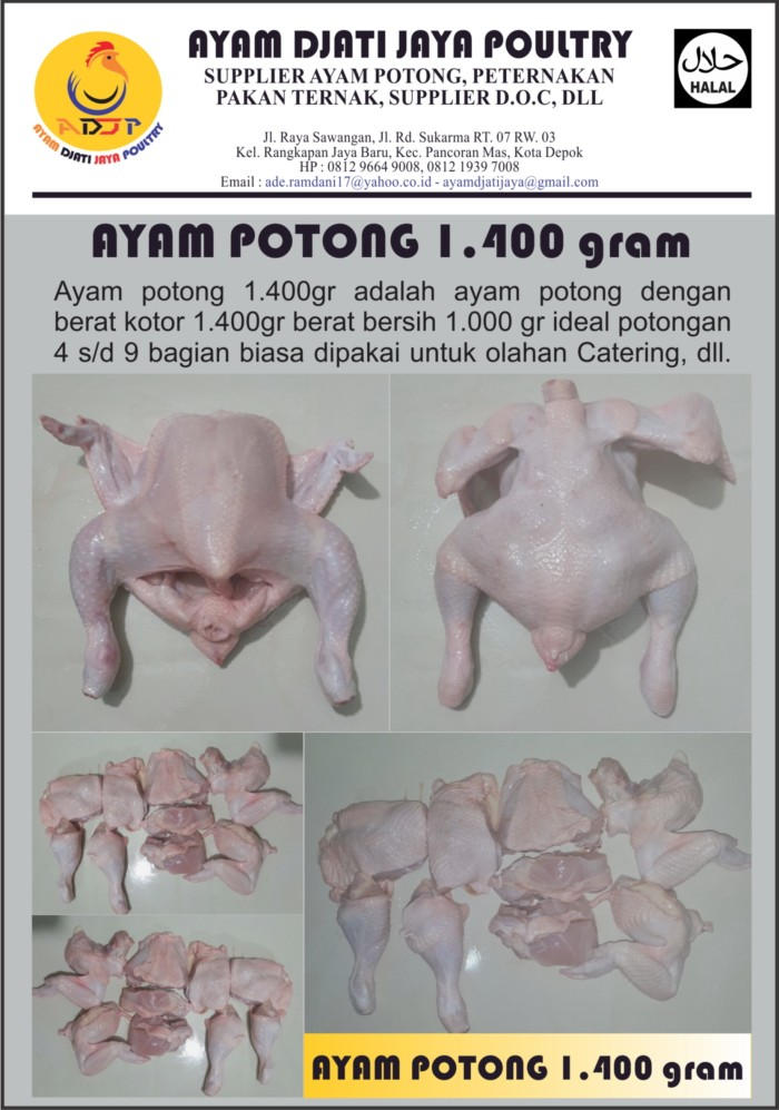harga Ayam potong ekor 1.400gram Tokopedia.com