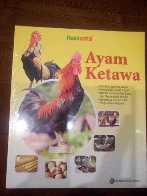 harga Ayam ketawa (soft cover) oleh flona Tokopedia.com