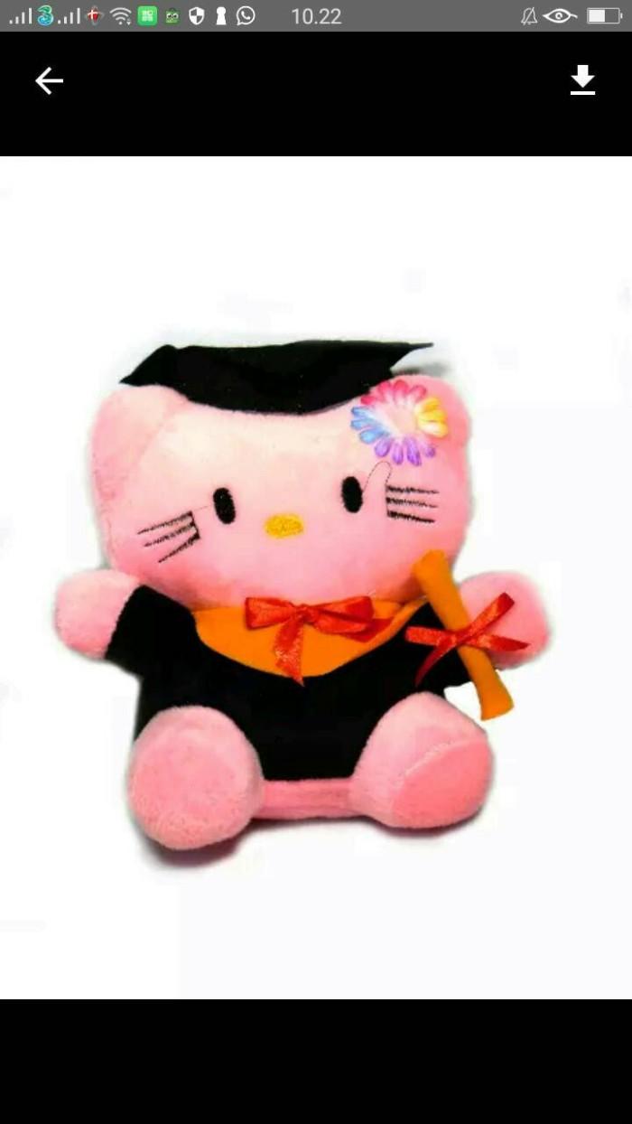 Jual Boneka Hello Kitty Dan Doraemon Wisuda Jakarta Pusat Request Shop