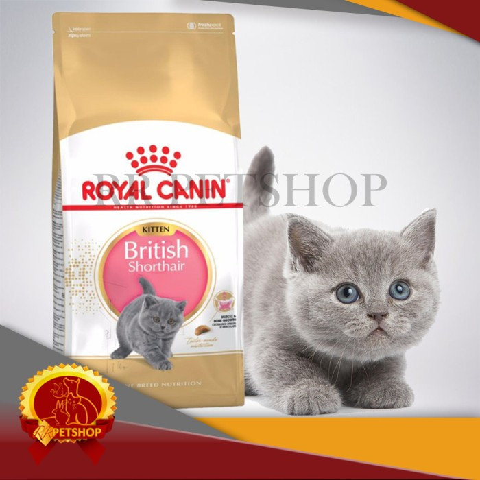 harga Cat food / makanan kucing royal canin british shorthair kitten 400 gr Tokopedia.com
