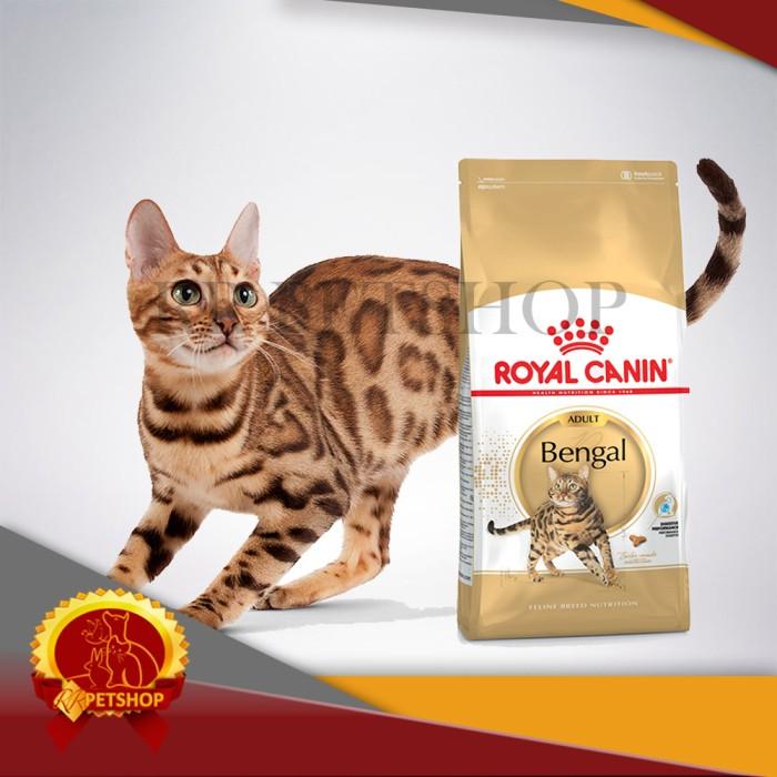 harga Cat food / makanan kucing royal canin bengal adult 400 gram Tokopedia.com