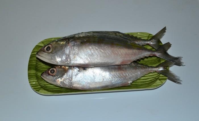harga Ikan kembung Tokopedia.com