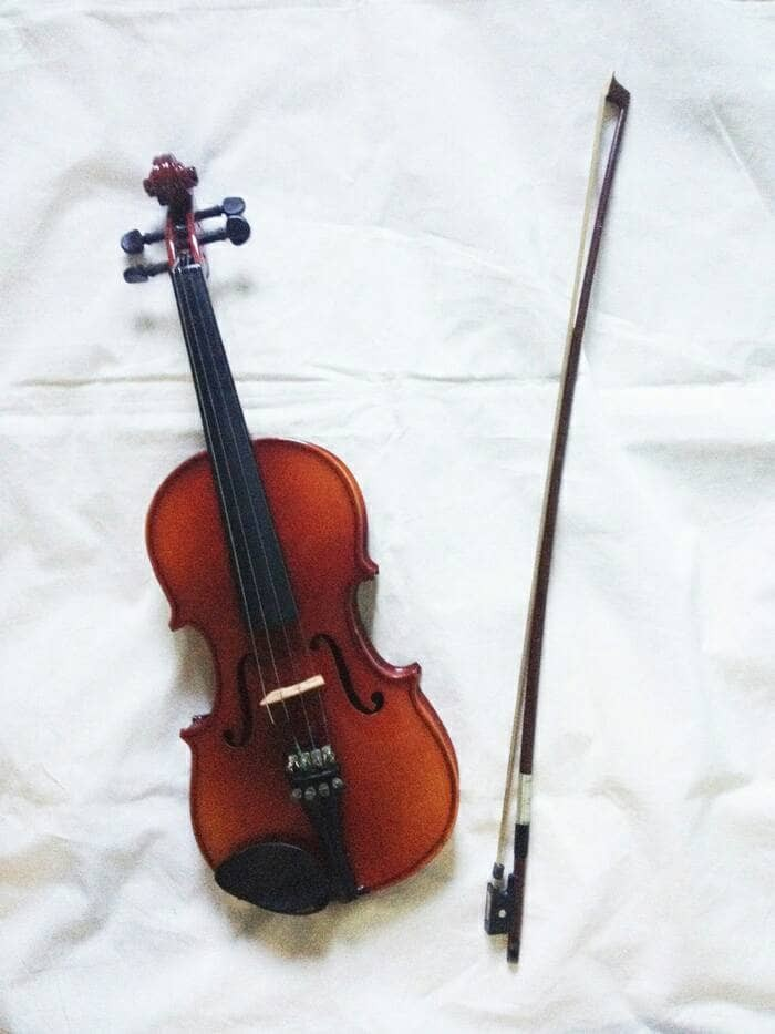 Set of 2 Prints Strings Violin Instrument Music Home Decor Matted Picture A168