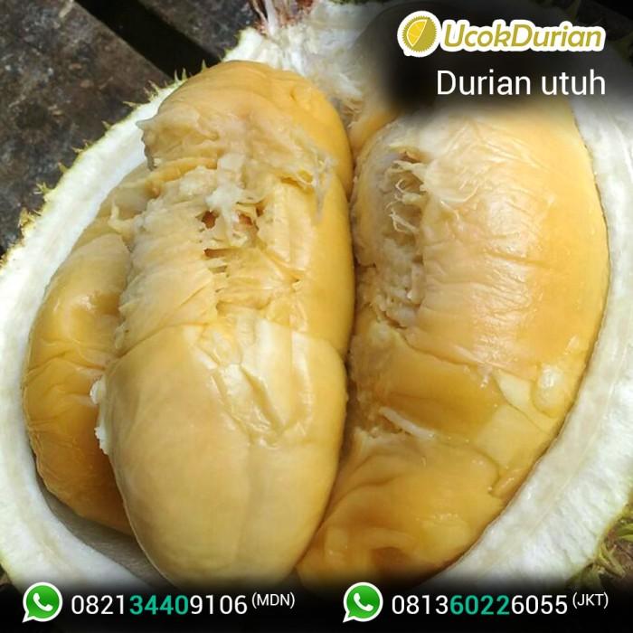jual durian ucok medan fresh utuh kulit paket 25 kg jakarta rh tokopedia com