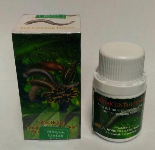 jual minyak lintah oil papua punan hijau asli untuk terapi pria