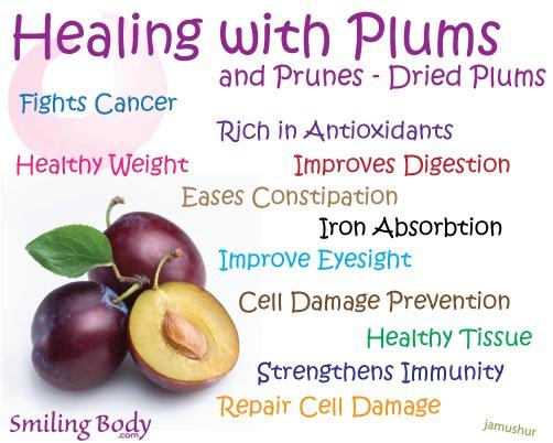 10 Manfaat Buah Plum Untuk Kesehatan