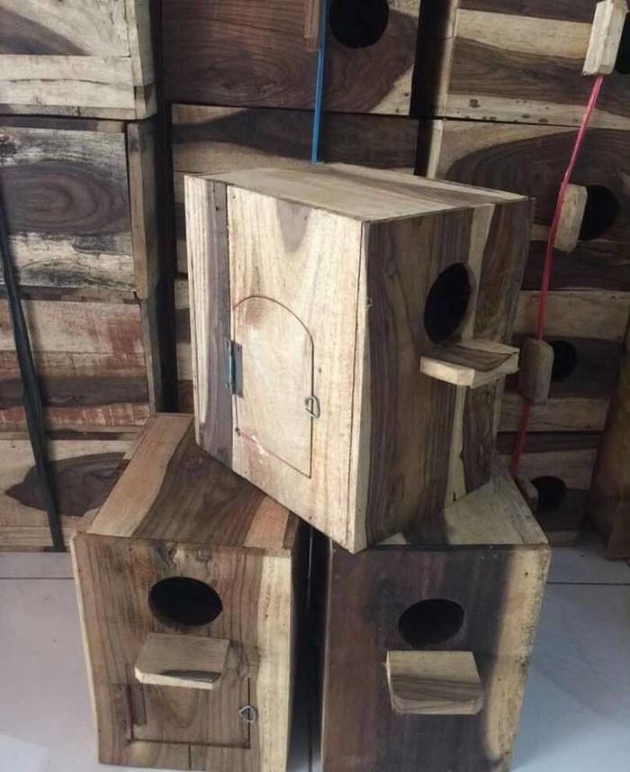 harga Glodok lovebird tempat sarang bertelur burung Tokopedia.com