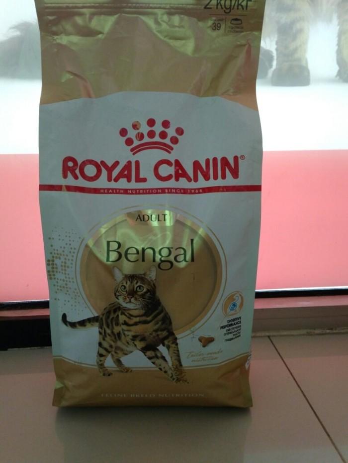 harga Royal canin bengal adult 2kg/makanan khusus kucing bengal Tokopedia.com