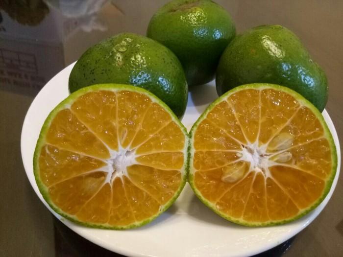 Jual Buah jeruk pontianak