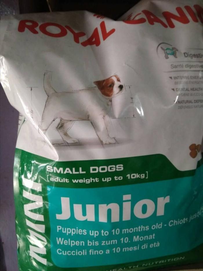 harga Royal canin mini junior 2kg / makanan anjing anakan mini / rc mini Tokopedia.com