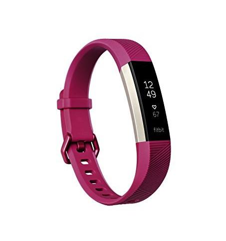 harga Fitbit alta hr - fuschia - l (idn) Tokopedia.com