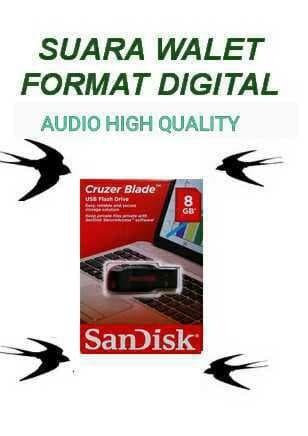 Foto Produk Suara Panggil dan Nginap Burung Walet USB 8GB PER PCS dari First Audio Pro