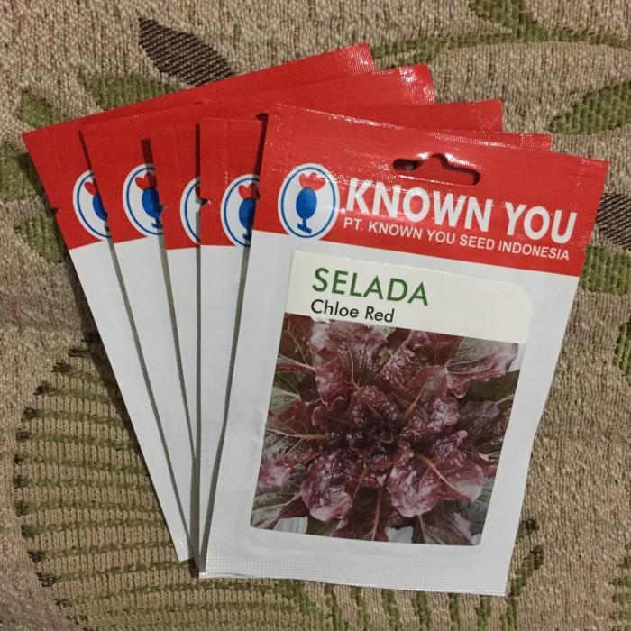 Foto Produk Selada Merah Chloe Red Lettuce merk Known You Seed, kemasan asli dari Simon Peter
