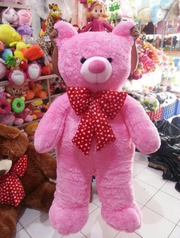 Jual Boneka Teddy Bear Ekstra Besar Big Jumbo - Queen ACC II  1ec1f3ac69