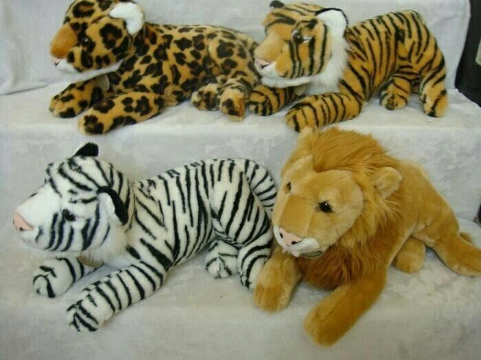 48+ Hewan singa dan harimau terbaru