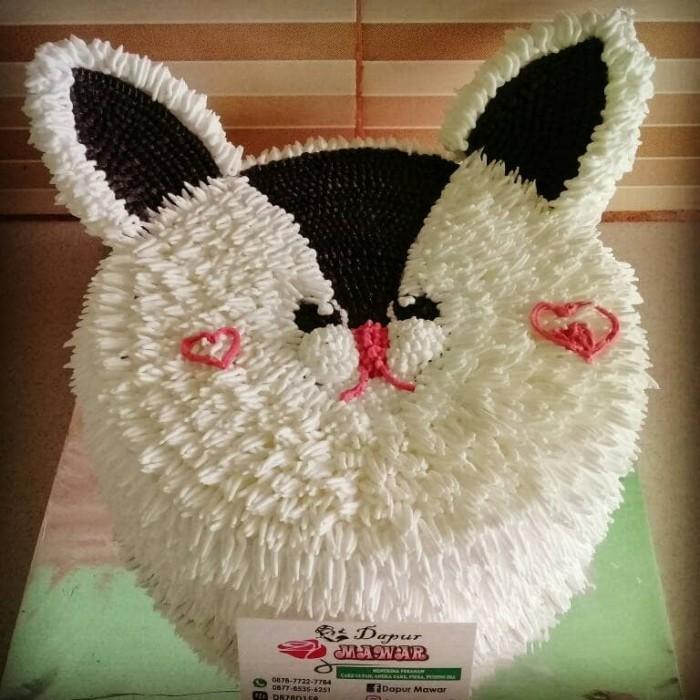 Jual Cake Tart Ulang Tahun Kue Ultah Birthday Cakeunik Kucing Cat Jakarta Utara Dapur Mawar 12 Tokopedia